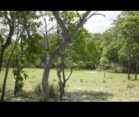 Propriedade Rural no Buriti Corrente